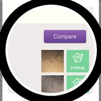 compare-button